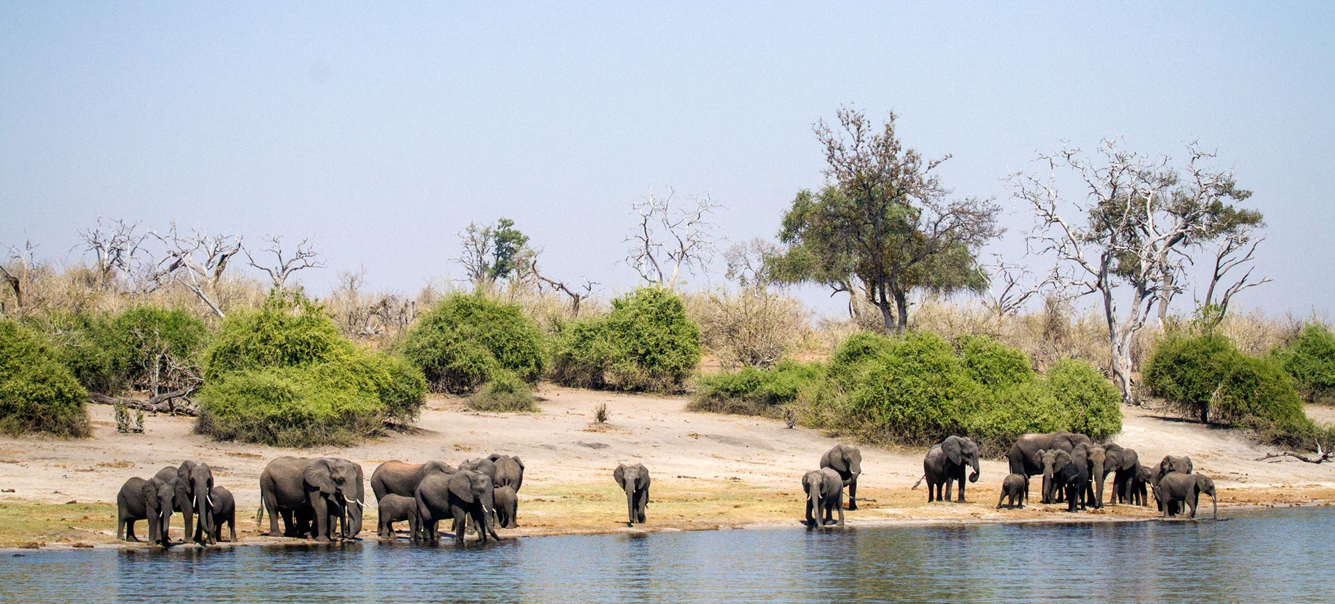 Chobe Day Tours