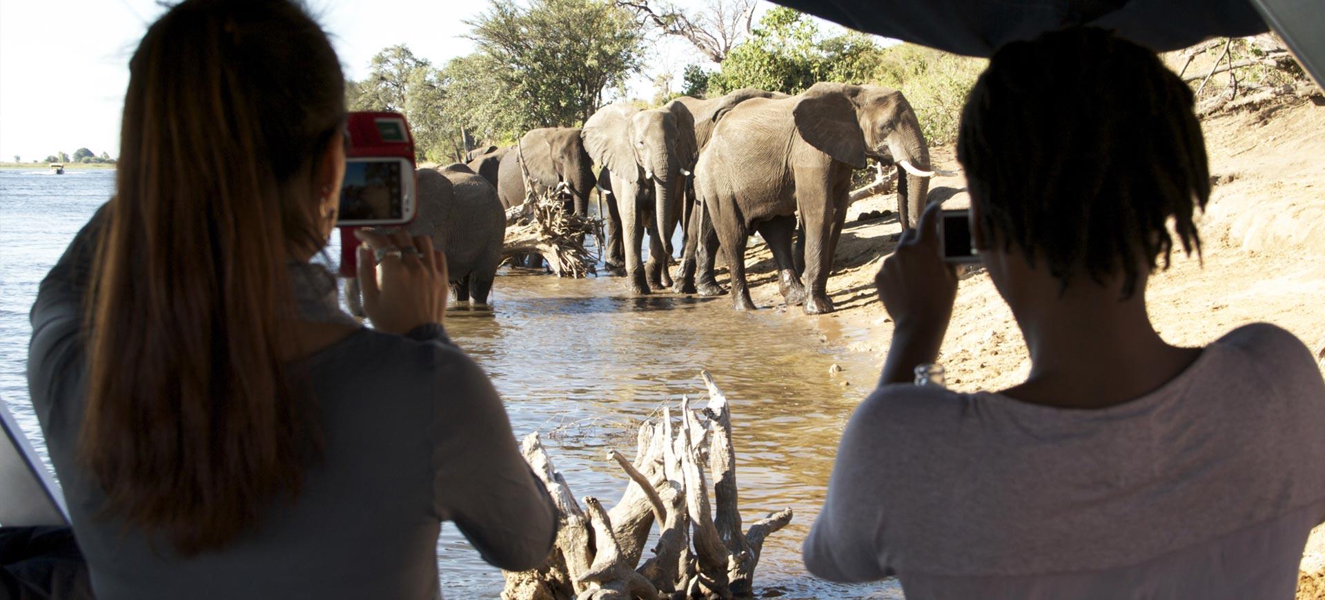 Chobe Day Trip Victoria Falls