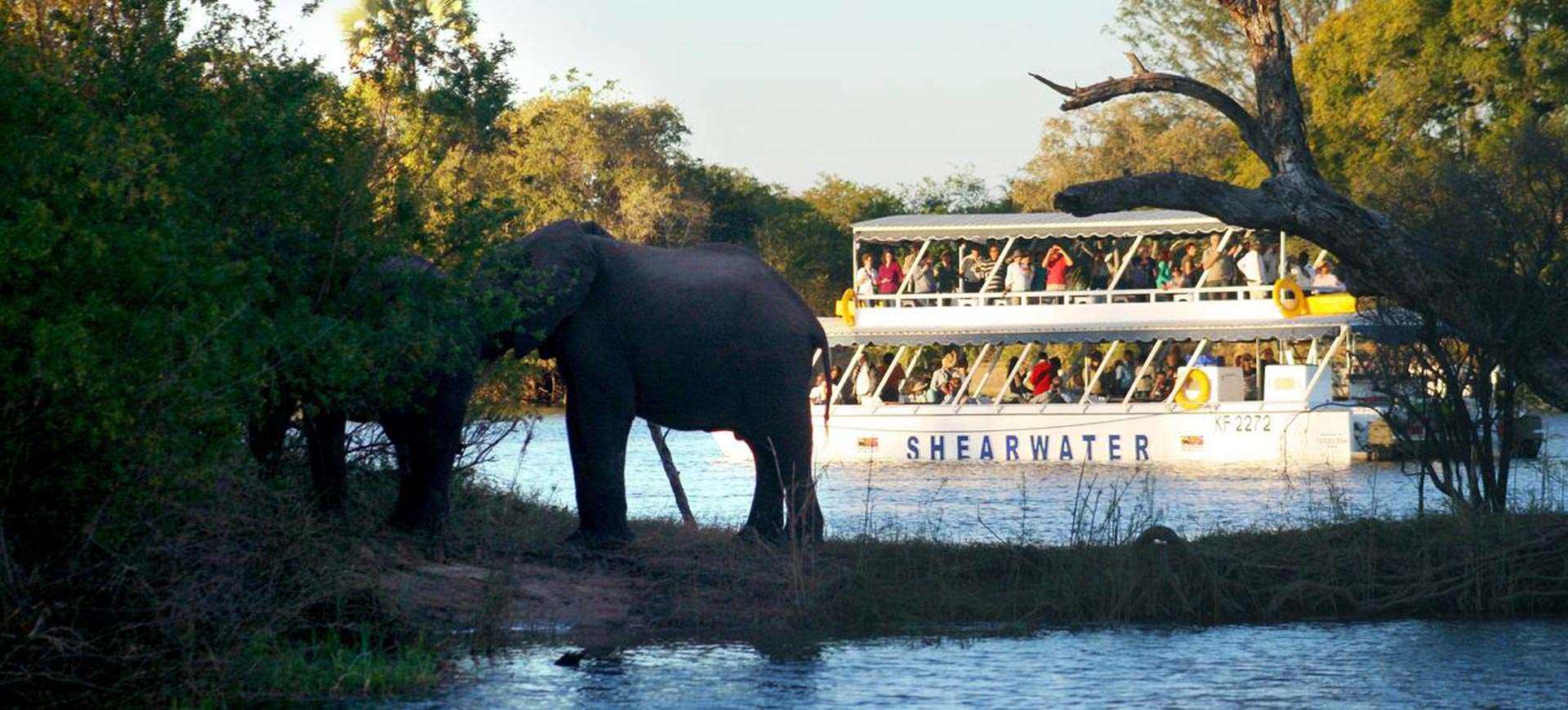 Classic Zambezi River Sunset Cruise