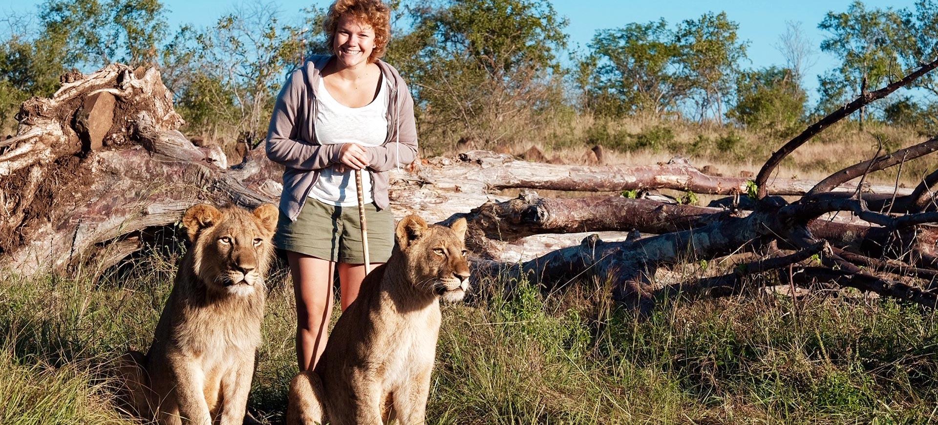 Victoria Falls Lion Walks